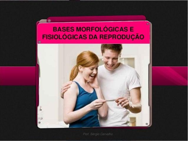 BASES MORFOLÓGICAS E                        FISIOLÓGICAS DA REPRODUÇÃOProf. Sérgio Carvalho                               ...