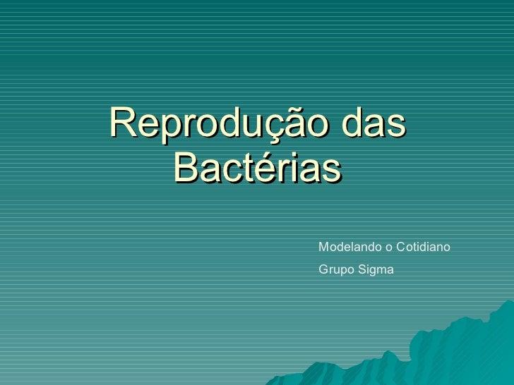 Reprodução das Bactérias Modelando o Cotidiano Grupo Sigma