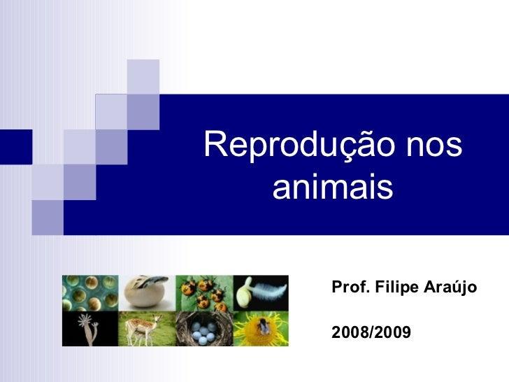 Reprodução nos animais Prof. Filipe Araújo 2008/2009