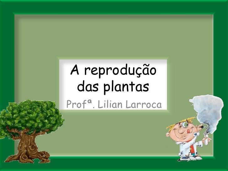 A reprodução das plantas<br />Profª. Lilian Larroca<br />