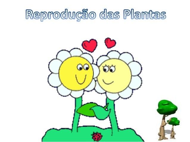 Reprodução das Plantas A reprodução de quase todas as plantas acontece por meio da flor, que possui, em seu interior, o ór...