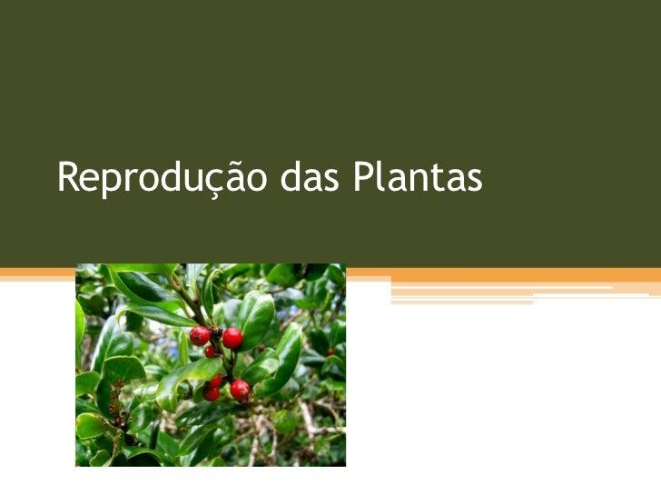 Reprodução das Plantas<br />