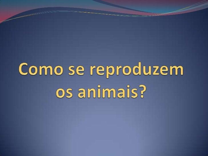 Como se reproduzem os animais?<br />