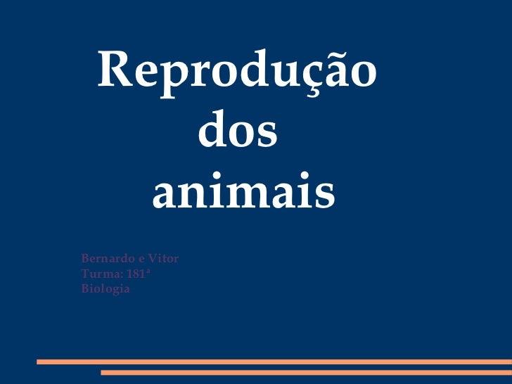 Bernardo e Vitor Turma: 181ª Biologia Reprodução  dos  animais