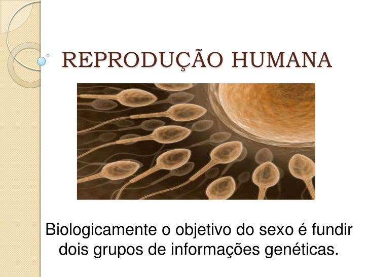 REPRODUÇÃO HUMANABiologicamente o objetivo do sexo é fundir  dois grupos de informações genéticas.