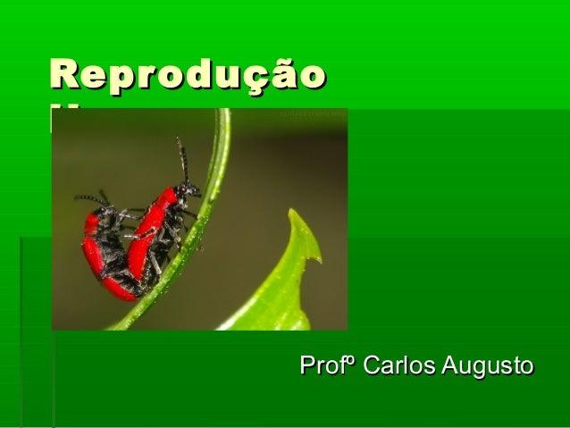 ReproduçãoReprodução HumanaHumana Profº Carlos AugustoProfº Carlos Augusto