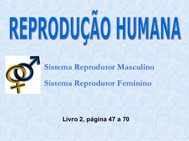 Sistema Reprodutor Masculino Sistema Reprodutor Feminino  Livro 2, página 47 a 70
