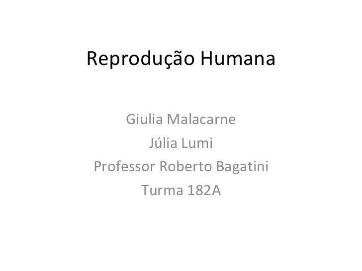 Reprodução Humana Giulia Malacarne Júlia Lumi Professor Roberto Bagatini Turma 182A