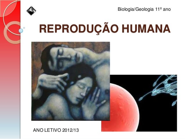 REPRODUÇÃO HUMANA ANO LETIVO 2012/13 Biologia/Geologia 11º ano