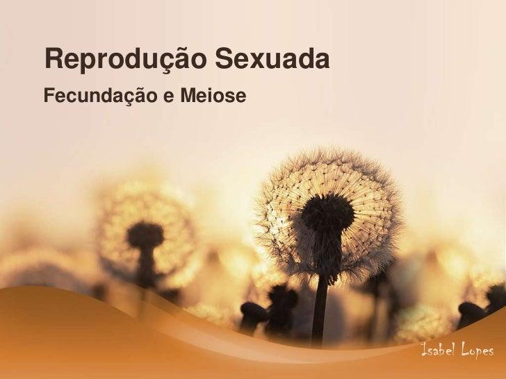 Reprodução SexuadaFecundação e Meiose                      Isabel Lopes