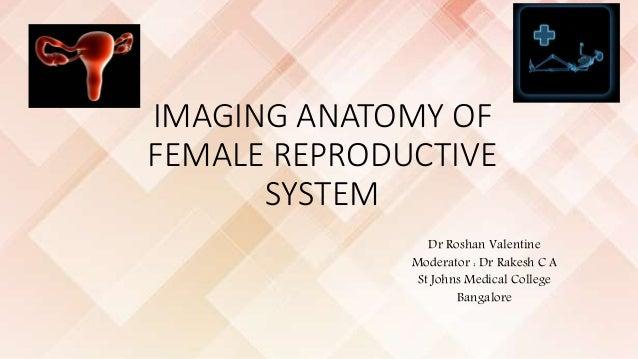 IMAGING ANATOMY OF FEMALE REPRODUCTIVE SYSTEM Dr Roshan Valentine Moderator : Dr Rakesh C A St Johns Medical College Banga...