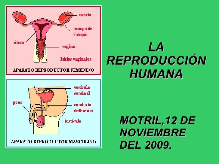 LA REPRODUCCIÓN HUMANA MOTRIL,12 DE NOVIEMBRE DEL 2009.