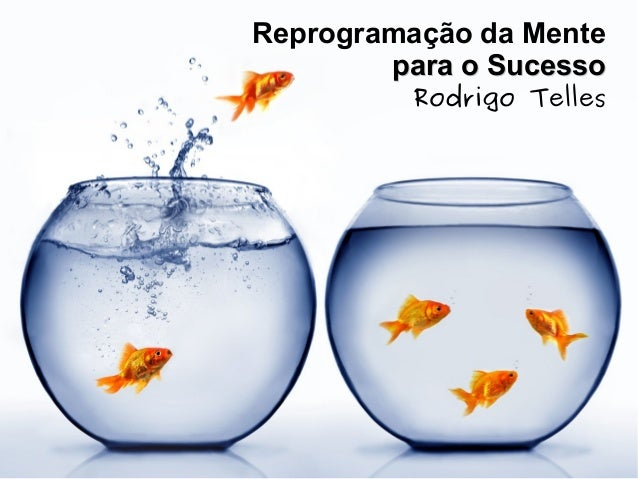 Reprogramação da Mente para o Sucessopara o Sucesso Rodrigo Telles