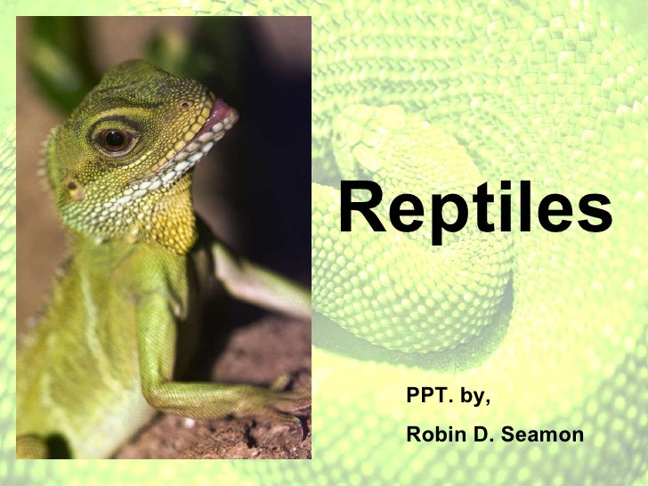 Reptiles PPT. by,  Robin D. Seamon