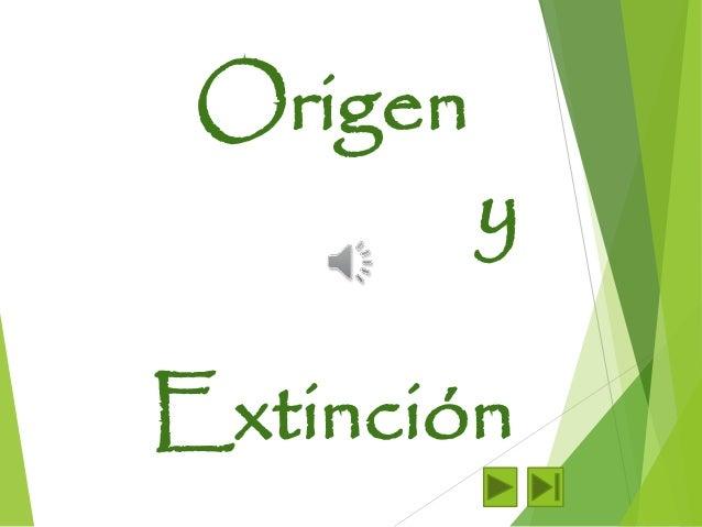 Origen  y  Extinción