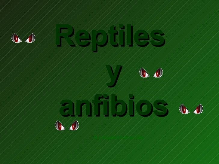 Reptiles  y  anfibios By: Mayelin Martinez Cobas