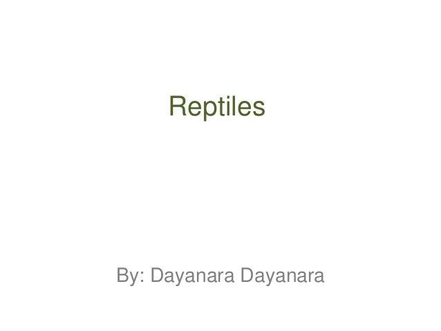 ReptilesBy: Dayanara Dayanara