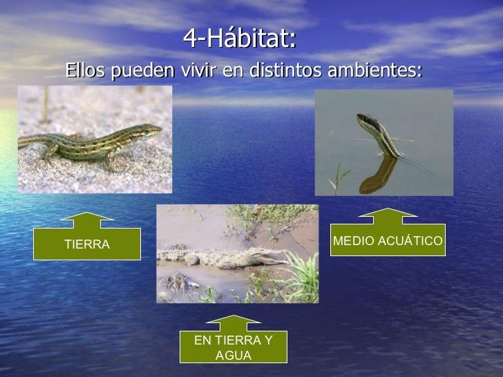 Vivir present for Conjugaison espagnol hablar