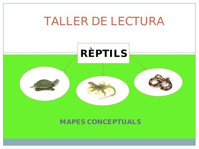 MAPES CONCEPTUALS TALLER DE LECTURA RÈPTILS