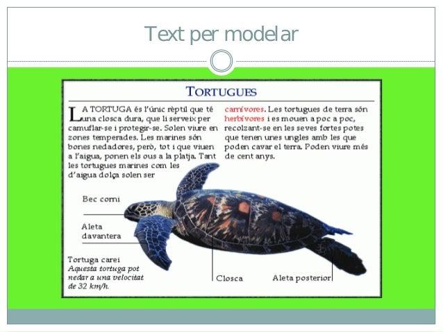 Taller de lectura: Mapes conceptuals Slide 3