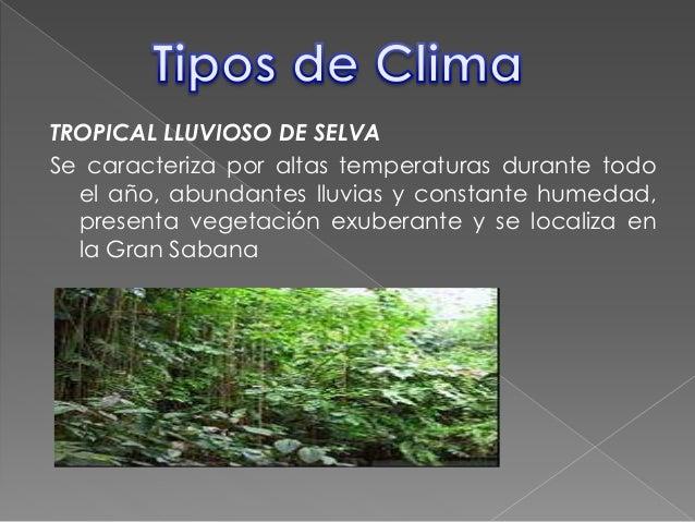 El clima - El tiempo en macanet de la selva ...