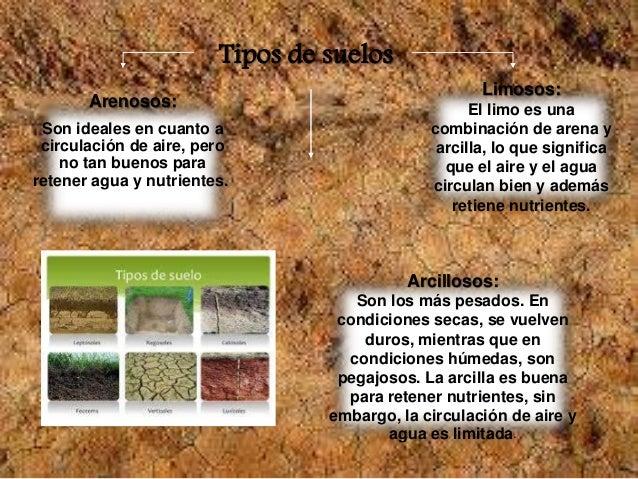 Los suelos for Tipo de suelo 1