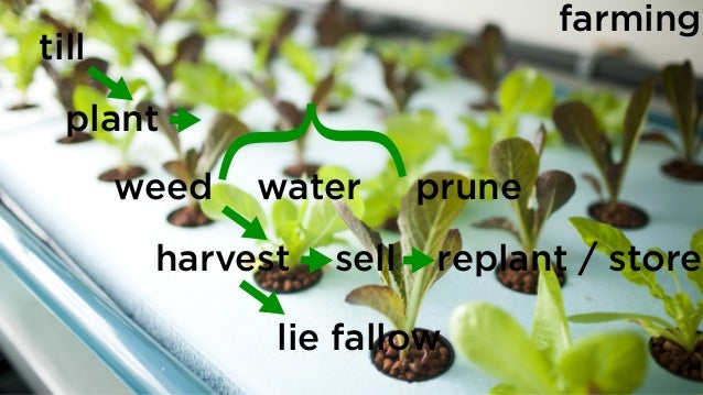 till plant weed water prune harvest lie fallow sell replant / store } farming