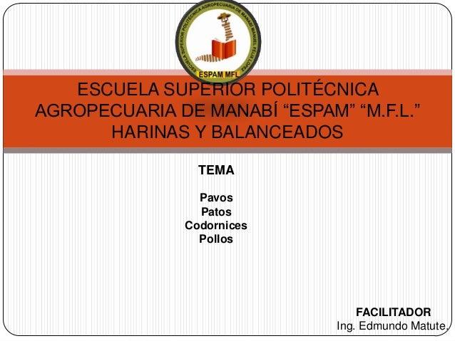 """ESCUELA SUPERIOR POLITÉCNICA AGROPECUARIA DE MANABÍ """"ESPAM"""" """"M.F.L."""" HARINAS Y BALANCEADOS TEMA Pavos Patos Codornices Pol..."""