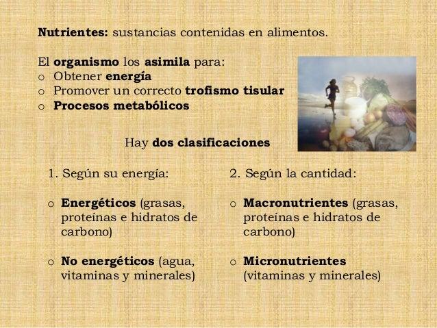 Requerimientos nutricionales Slide 3