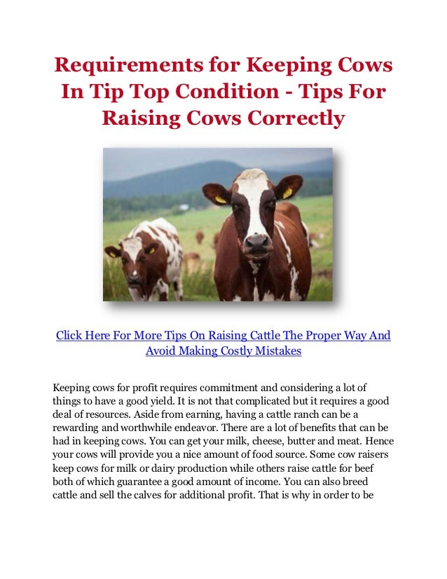 Requirements for Keeping CowsIn Tip Top Condition - Tips For    Raising Cows CorrectlyClick Here For More Tips On Raising ...