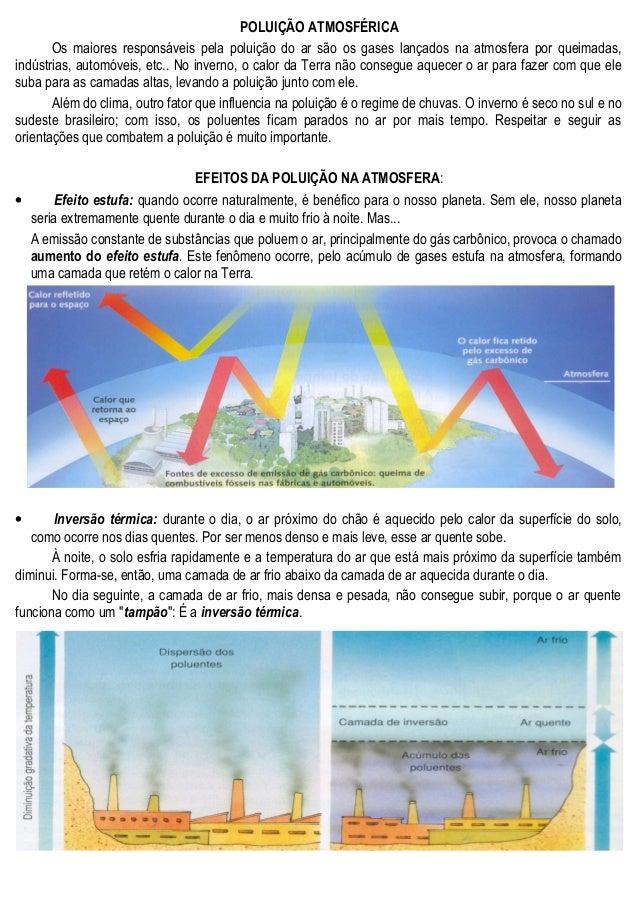POLUIÇÃO ATMOSFÉRICA Os maiores responsáveis pela poluição do ar são os gases lançados na atmosfera por queimadas, indústr...