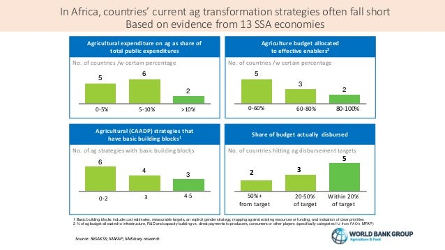 In Africa, countries' current ag transformation strategies often fall short Based on evidence from 13 SSA economies 6 Agri...