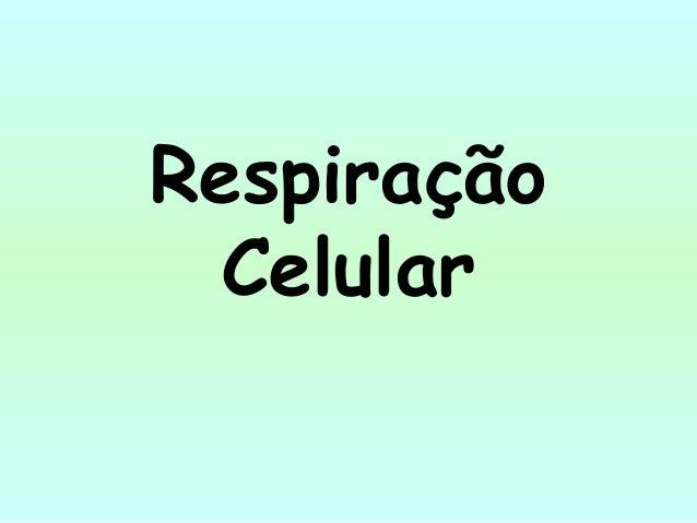 RespiraçãoCelular