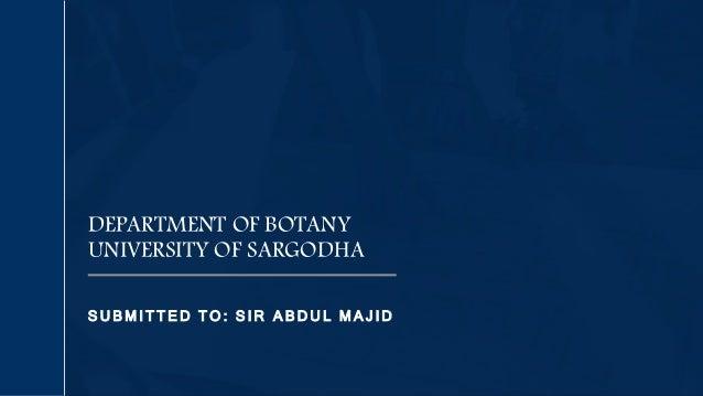 S U B MI TTE D T O : S I R A B D U L M A J ID DEPARTMENT OF BOTANY UNIVERSITY OF SARGODHA