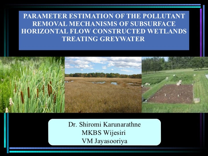 PARAMETER ESTIMATION OF THE POLLUTANT REMOVAL MECHANISMS OF SUBSURFACE HORIZONTAL FLOW CONSTRUCTED WETLANDS TREATING GREYW...