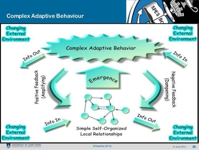 2913 June 2013Complex Adaptive BehaviourWikipedia (2013)