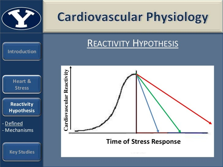 what is cardiovascular reactivity