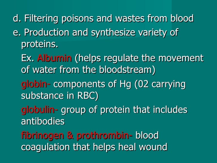 <ul><li>d. Filtering poisons and wastes from blood </li></ul><ul><li>e. Production and synthesize variety of proteins.  </...