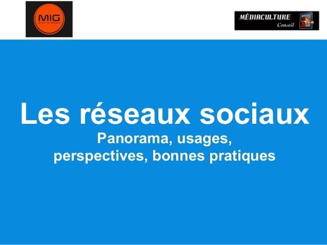 Les réseaux sociaux Panorama, usages, perspectives, bonnes pratiques