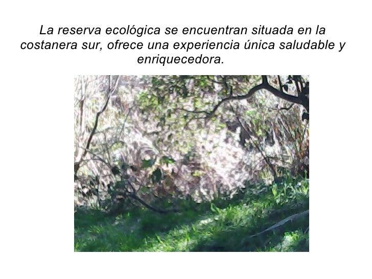 La reserva ecológica se encuentran situada en la costanera sur, ofrece una experiencia única saludable y enriquecedora.