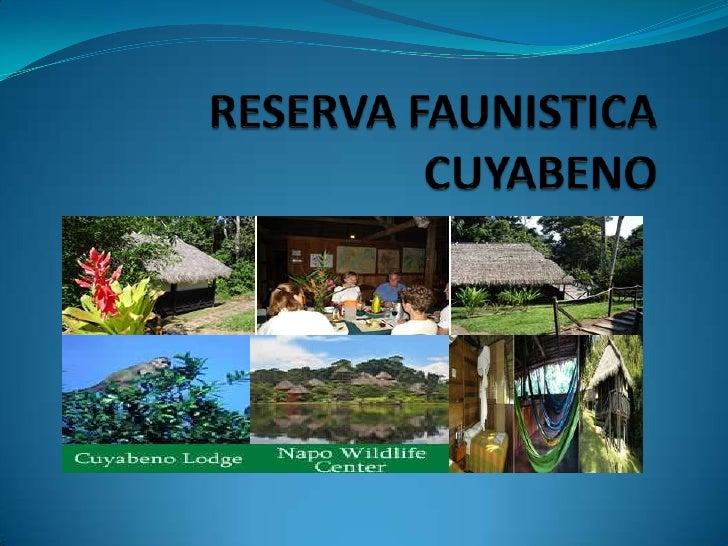 RESERVA FAUNISTICA CUYABENO<br />