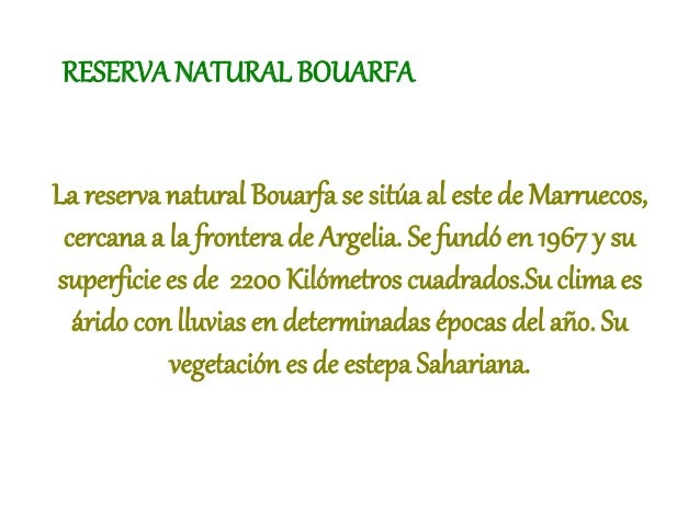 RESERVA NATURAL BOUARFA La reserva natural Bouarfa se sitúa al este de Marruecos, cercana a la frontera de Argelia. Se fun...