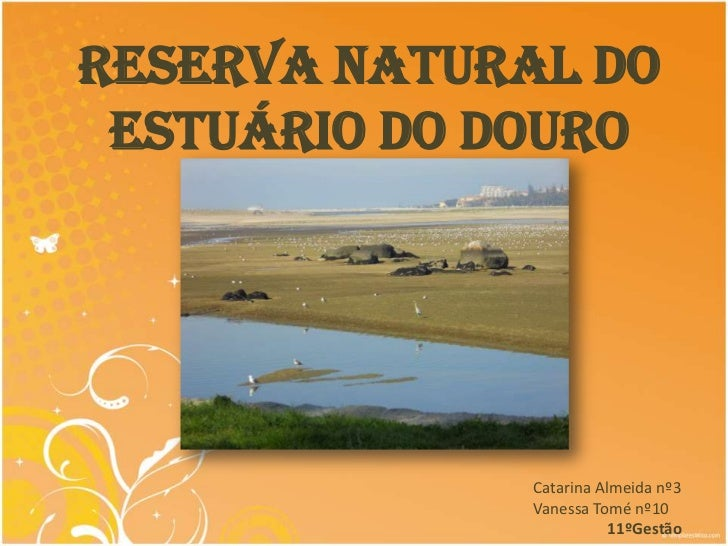 Reserva Natural do Estuário do Douro              Catarina Almeida nº3              Vanessa Tomé nº10                     ...