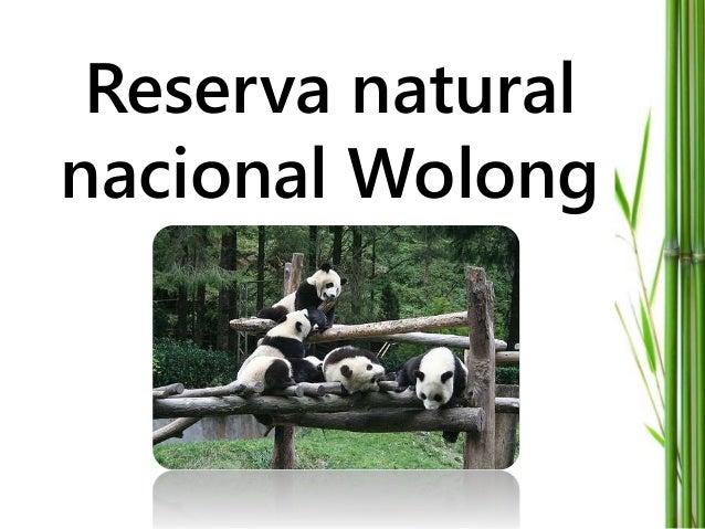 Reserva natural nacional Wolong
