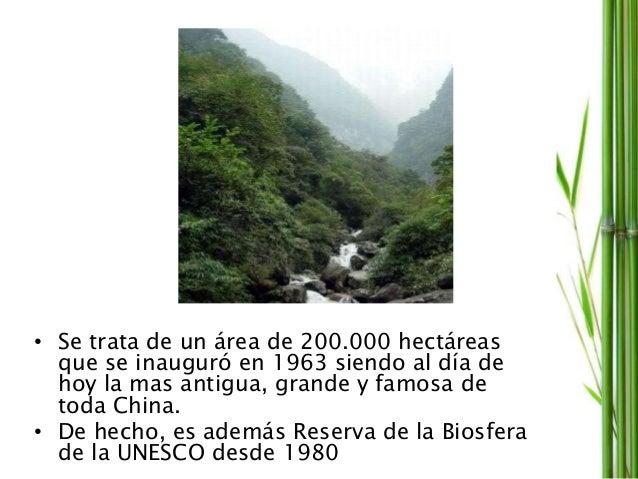 • Se trata de un área de 200.000 hectáreas que se inauguró en 1963 siendo al día de hoy la mas antigua, grande y famosa de...