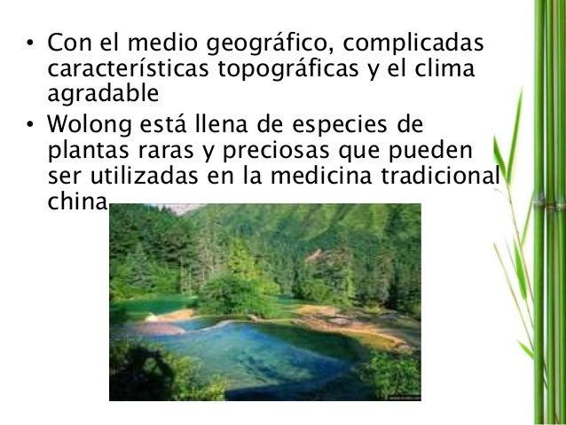 • Con el medio geográfico, complicadas características topográficas y el clima agradable • Wolong está llena de especies d...