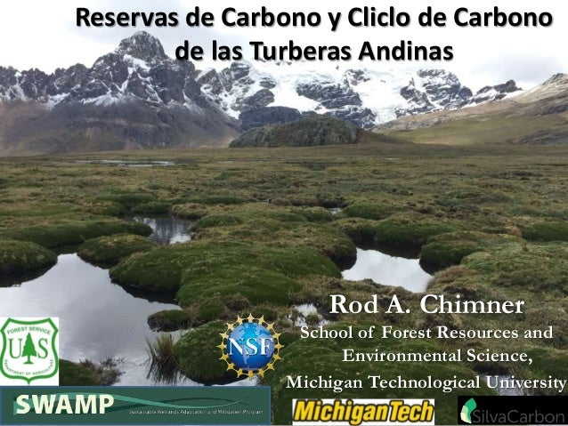 Rod A. Chimner School of Forest Resources and Environmental Science, Michigan Technological University Reservas de Carbono...