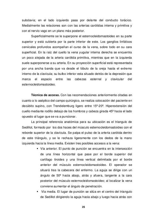 Hermosa Puerto De Una Anatomía Colocación Cath Regalo - Imágenes de ...