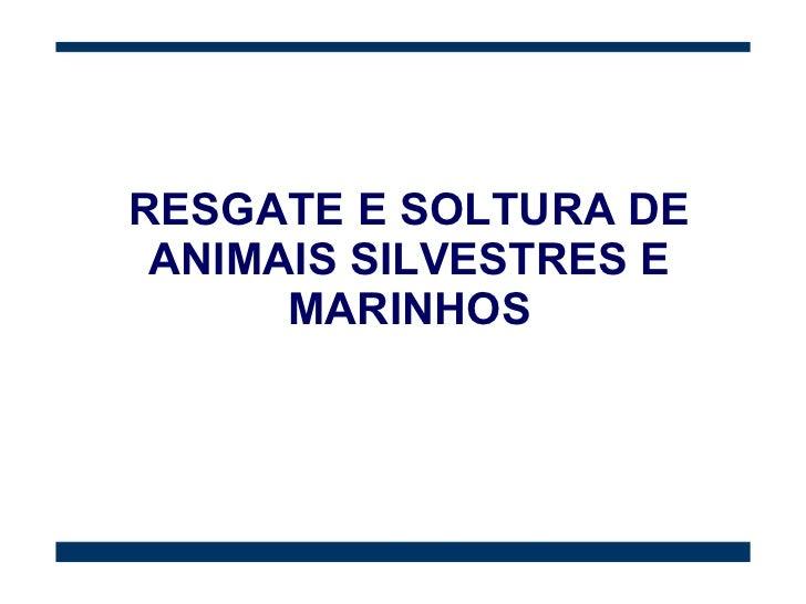 RESGATE E SOLTURA DE ANIMAIS SILVESTRES E MARINHOS
