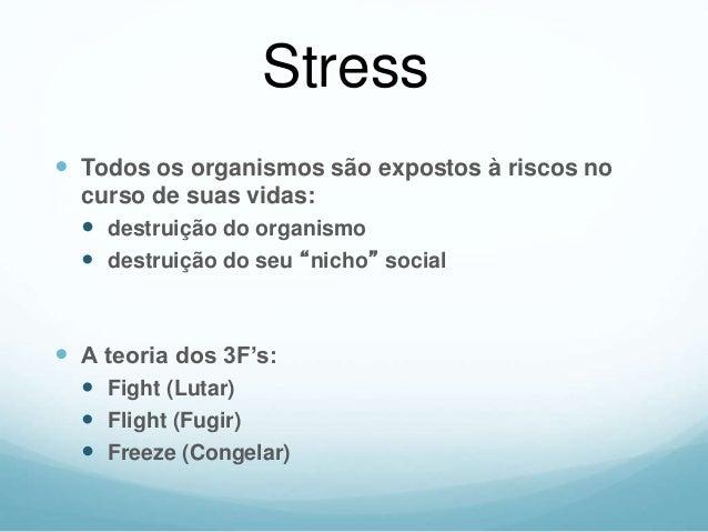 04 Pilares do Controle do Stress Atividade Física Alimentação Equilibrada Relaxamento Modificação dos Pensamentos